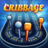 icon Cribbage 2.0.7